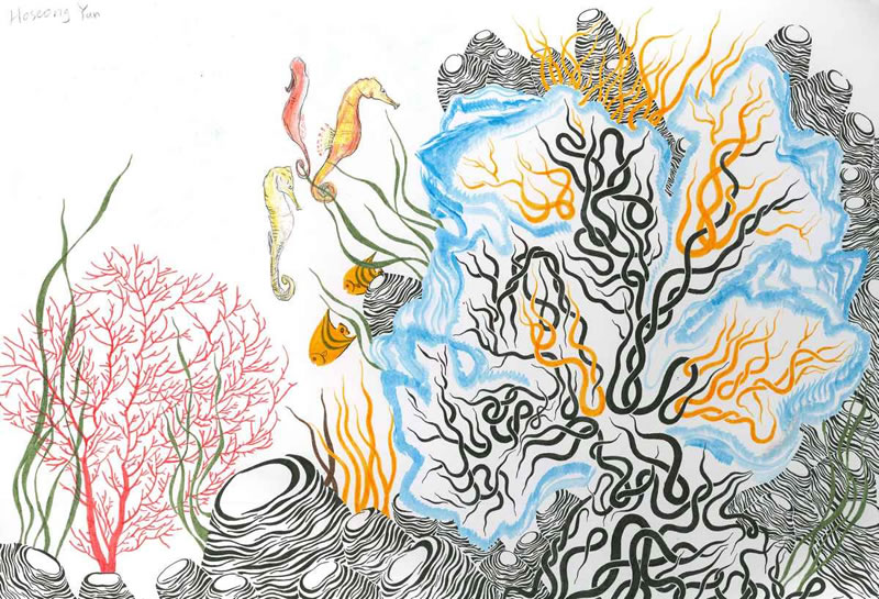 Hoseong Yun, Age 15, Aberdeen, United Kingdom; The Harmony of Coral Reefs