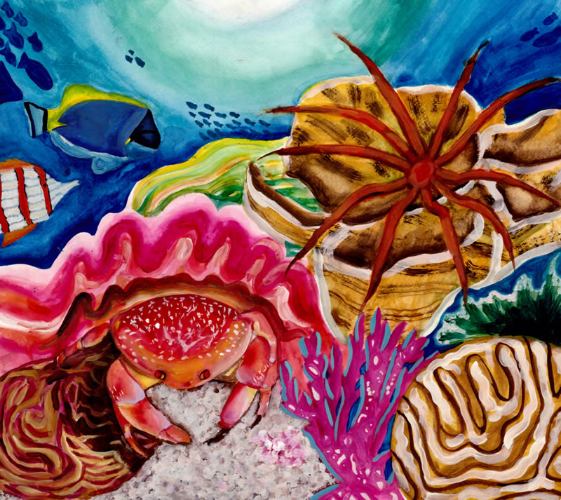 Catherine Zheng, Age 12, Parsippany, NJ; Coral Reef Companions