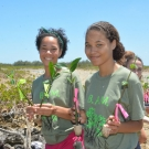 Marine Science students at Forest Heights Academy say goodbye to their mangrove propagules that they have been caring for the past 7 months.
