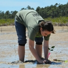 Forest Heights Academy student tries to secure the squishy mud around her propagule to stabilize it.