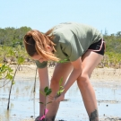 Forest Heights Academy student readjusts the position of her mangrove seedling in the mud, so that the lenticels that allow for gas exchange are exposed to the air.
