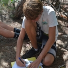 10th grade Biology student traces the red mangrove leaf and labels it with the distinguishing structures.