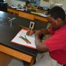 Forest Heights Academy B.A.M. participant writes down observations about his seedlings.