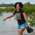 3.	It's a slippery, wet, and muddy walk through the mangrove forest to collect a few leaves.