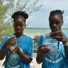 5.	Measuring the salinity of water in the mangrove forest.