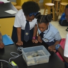 The upside jellyfish intrigues students at Abaco Central High School. Students know not to touch this stinging creature.
