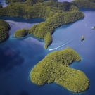 Palau from above. Photo: ©Keith Ellenbogen/iLCP
