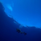 Anderson Mayfield during a safety stop at the end of a dive under the ceiling of a glassy calm sea.