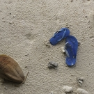 Notice anything strange about these shoes? Take a close look and notice that they are two completely different shoes in the same color that happned to wash up as garbage onto an uninhabited island in the Three Brothers group of Chagos