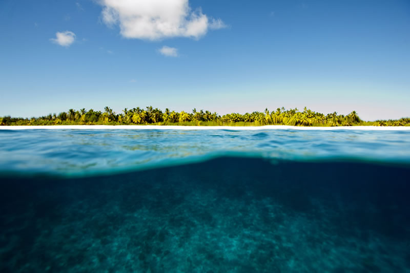 View above and below the water line at the end of a morning survey dive off South Brother Island along the western edge of the Great Chagos Bank.
