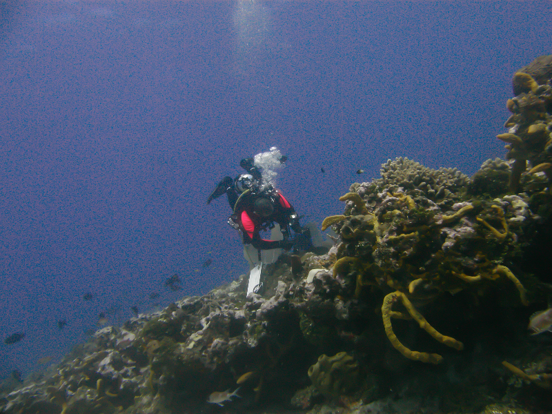 A member of the Science Team conducting a survey.