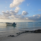 Serene picture of a Cook Islands Beach.