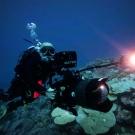 Cameraman Doug Allan filming in BIOT.