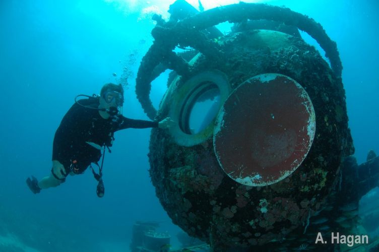 diver_visits_aquarius-284-950-500-80