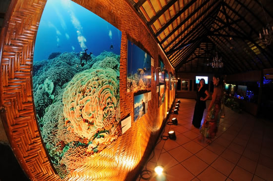 2-living-oceans-foundation-expo-54