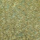 Meandering coral (Platygura sp.)