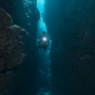 Philip Renaud, Executive Director of the Khaled bin Sultan Living Oceans Foundation, swims through a deep crevice of coral on the Great Barrier Reef.
