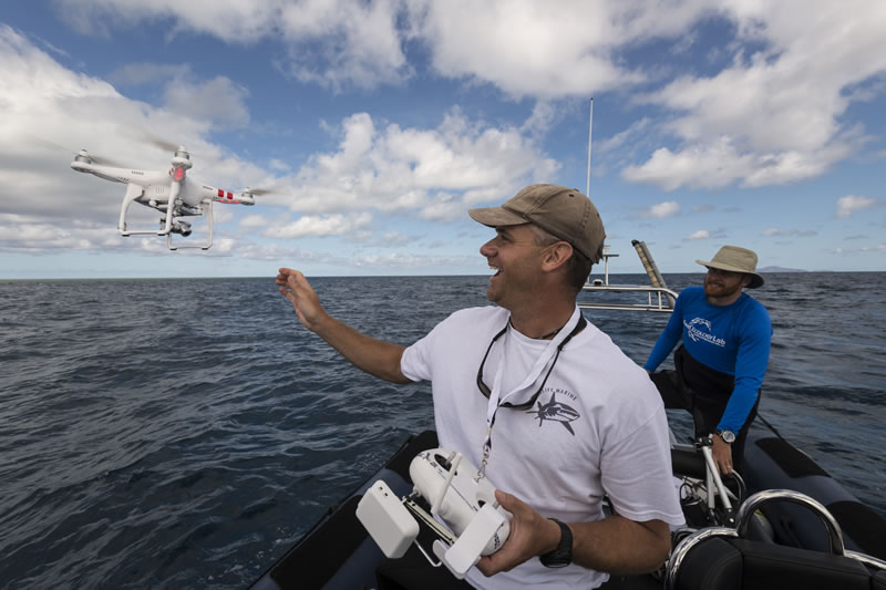 Will Robbins uses a camera drone to find sharks on reeftops with Brett Taylor.