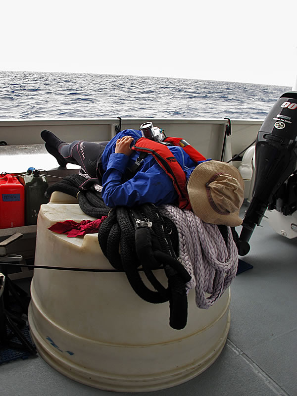 Abby Cannon catching 40 winks on the aft deck of the Shadow while waiting to load the dive boats for our morning dives.