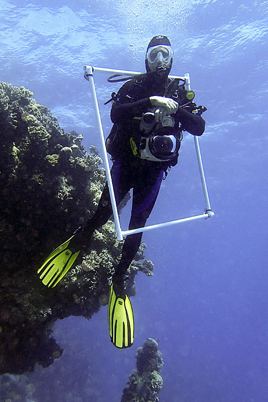 Ken Marks with his PVC square after completing coral photo transects.