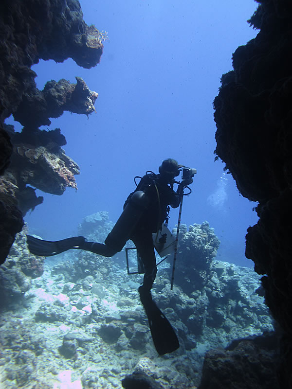 Grace Frank taking photos on the reef.