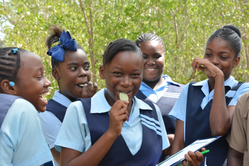 Jamaican high school students taste the saltiness of mangrove leaves as part of the Jamaican Awareness of Mangroves in Nature (JAMIN) project.