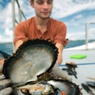 Researcher, Simon Van Wynsberge, displaying open oyster with symbiotic shrimp inside.