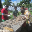 Sea Cucumber Harvesting