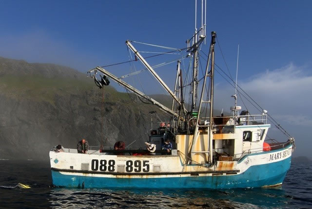 Fishing for cod in Newfoundland aboard the Mary Benetta