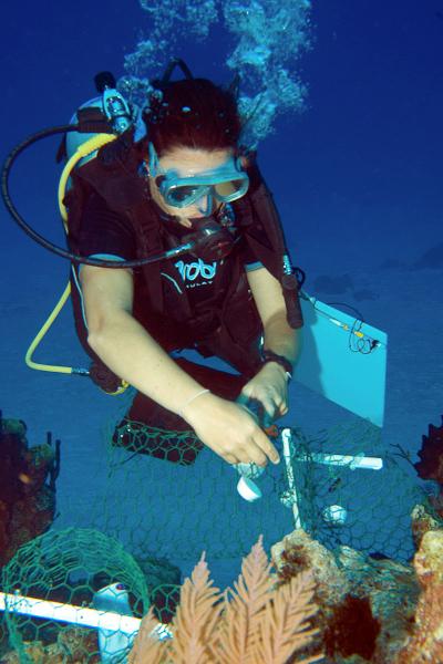 Dr. Sonia Bejarano conducts a scientific survey.