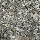 Pavement of coral rubble along the beach on Middle Brother.