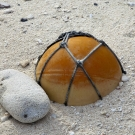 Plastic fishing net float buoy buried in the beach sand.