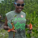 A young lady from Holland High School proudly holds up her mangrove propagules.