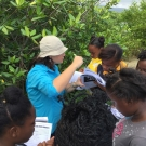 Director of Education, Amy Heemsoth helps 10th grade Biology students from Marcus Garvey to identify the different mangroves species.