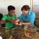 Shanna Thomas, University of the West Indies and Amy Heemsoth, Living Oceans Foundation work together to teach students about the animals and plants that are a part of the mangrove ecosystem.
