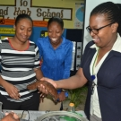 Fulvia Nugent, William Knibb High School JAMIN teacher, learns about sea cucumbers during a teacher training session.