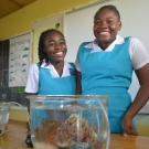 Excited students at William Knibb High School ask for a photo with a sea anemone.
