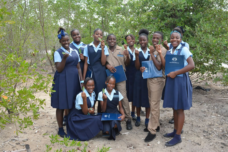 Students show off mangrove leaves they collected.