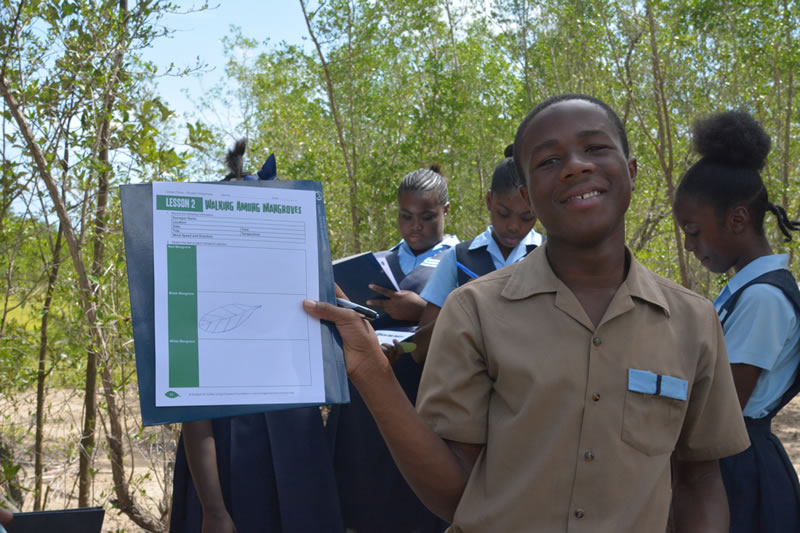 A student shows off his sketch of a mangrove leaf.
