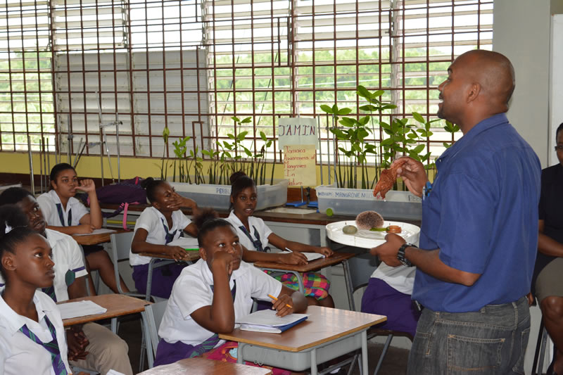 University of the West Indies partner, Camilo Trench, explains how sea stars, sea urchins, sand dollars, and sea cucumbers are part of the Phylum Echinodermata.