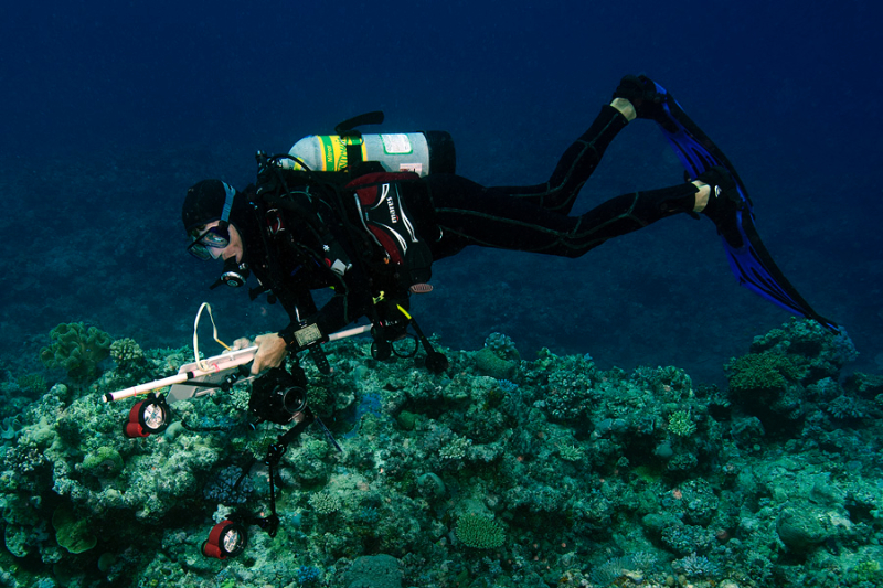 Dr. Andrew Bruckner surveying corals in New Caledonia.