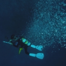 Chief Scientist Andy Bruckner descents to the reef in a shower of bubbles.
