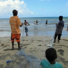 Men and boys pull in seine fishing net on the beach near their village.