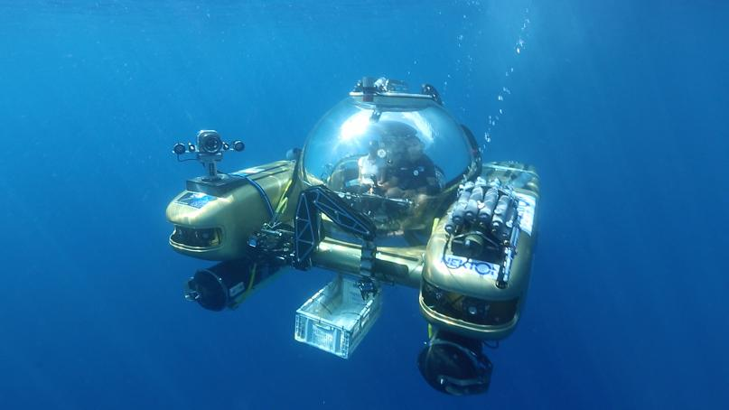 What a place to launch a report! Deep in the Sargasso Sea.