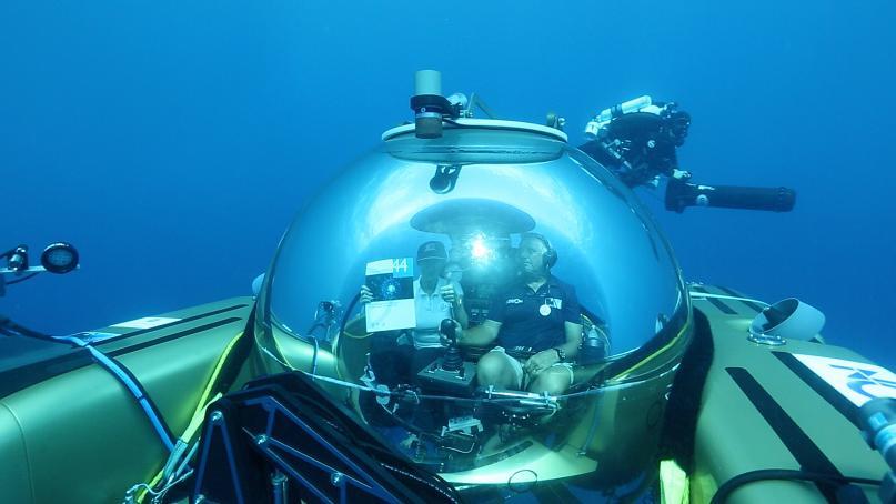 UNESCO-under-water-000006 Nekton