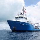 The Nekton research vessel, Baseline Explorer.