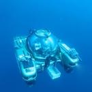 UNESCO-under-water-000008 Nekton