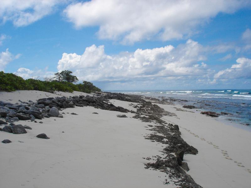 beach-rock_ashworth
