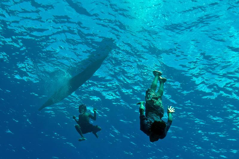 Solomon Islands Diving With Kids Living Oceans