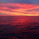 What a great way to end our day….a beautiful sunset in the Arnarvon Islands.